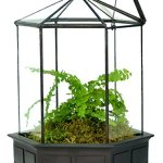 H-Potter-Six-Sided-Glass-Terrarium-Planter-0