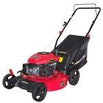 DB2194P-21-3-in-1-161cc-Gas-Push-Lawn-Mower-0