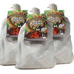 Composting-worms-2100-red-wigglers-0