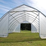 DELTA-Canopies-Large-Walk-in-Green-Graden-House-Commercial-Grade-40×20-Clear-Greenhouse-0-0