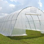 Green-Garden-Hot-House-Walk-In-Clear-Greenhouse-33×13-Sun-Shade-Cover-By-DELTA-Canopies-0-0