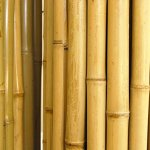 Natural-Rolled-Bamboo-Fencing-1-D-x-6-H-x-8-L-0-1
