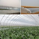 OriginA-Clear-Plastic-Film-Polyethylene-Covering-for-Greenhouse-and-Grow-Tunnel31mil65x100ft-0
