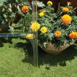 Palram-Nature-Harmony-Greenhouse-6-wide-x-8-long-0-2