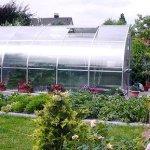 RIGA-5-17-ft-W-x-75-ft-H-Greenhouse-0