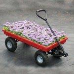 TekSupply-107001-All-Purpose-Plastic-Wagon-0-1