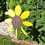 Full-Bloom-Spinning-Daisy-Sunflower-x6-case-0-0