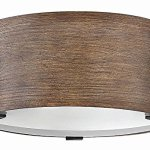 Hinkley-29201SQ-Transitional-Two-Light-Outdoor-Flush-Mount-from-Sawyer-collection-in-BronzeDarkfinish-0