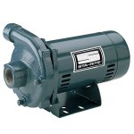 Pentair-Sta-Rite-JBMMG-59S-Single-Phase-Cast-Iron-Centrifugal-Pump-and-Motor-Assembly-2-12-HP-0