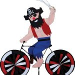 Premier-Designs-Bike-Spinner-Pirate-0