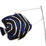 Premier-Kites-Swimming-Fish-Angelfish-0