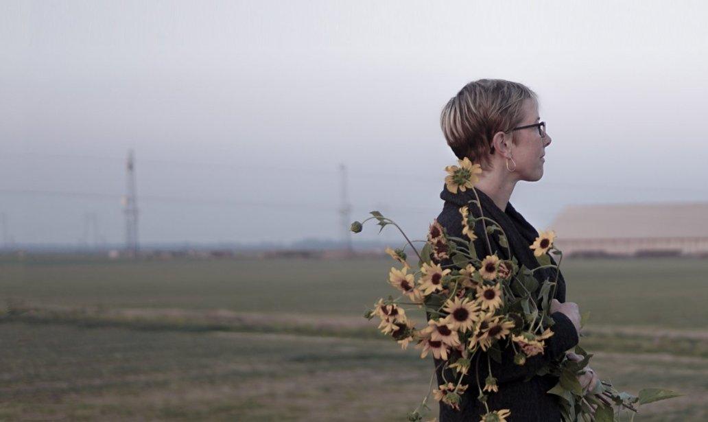 Lori Klocek, Farm with sunflowers