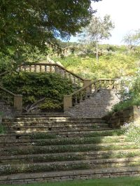 Steps up the very steep garden bank