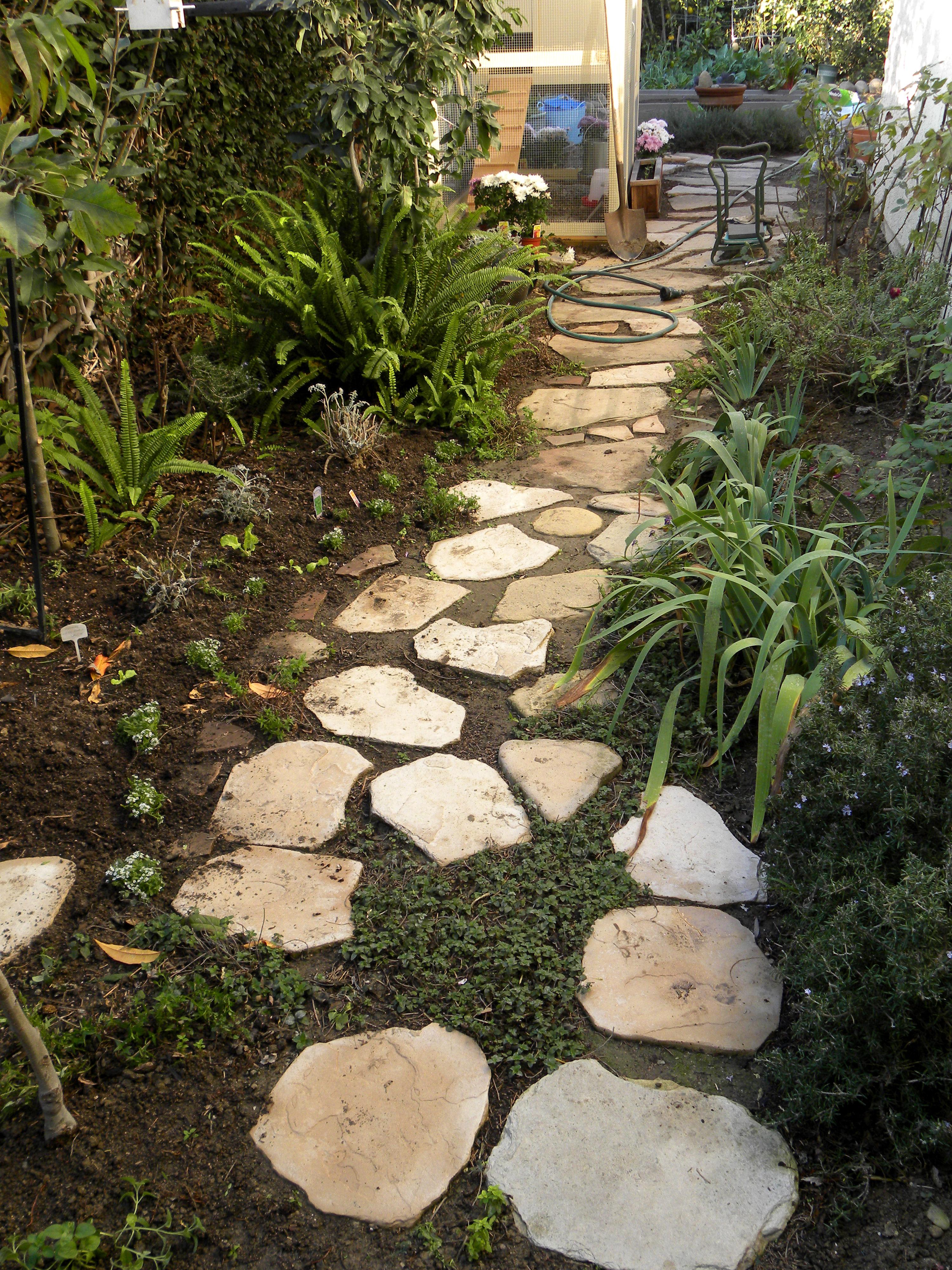revamped pathway