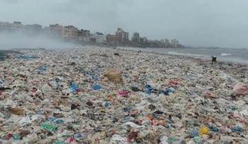 Δείτε τον μεγαλύτερο καθαρισμό παραλίας που έγινε ποτέ!