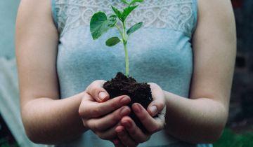 5 Δεκεμβρίου | Παγκόσμια Ημέρα Εδάφους