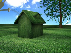 Green home Energy Efficient Home