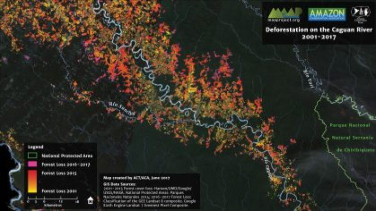 This is the first MAAP (Monitoring of the Andean Amazon Project) article for the Colombian Amazon and was produced in partnership between the Amazon Conservation Team (ACT) and Amazon Conservation, made possible by support from the MacArthur Foundation. MAAP seeks to improve understanding of current patterns and drivers of deforestation by harnessing the recent explosion of high-resolution satellite imagery and near-real-time deforestation data, and presenting this information #2