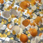 Balloons in a party so balloon council