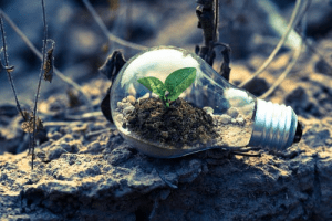 If you've been contemplating going green, this article is for you. Continue reading to learn simple, sustainable living tips that you can implement as you transition to a cleaner lifestyle.