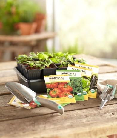 organic seeds from Martha Stewart