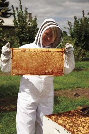 martha stewart bees