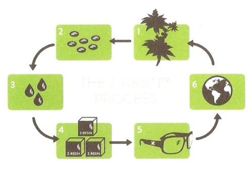 Zeal Optics Castor Plant