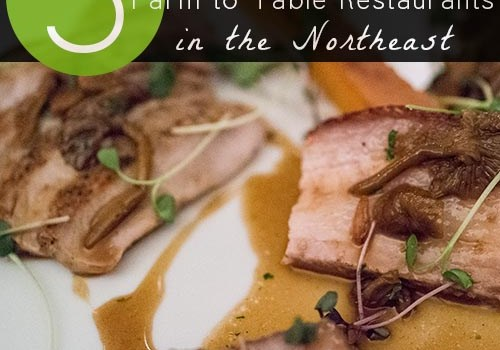 5 Amazing Farm to Table Restaurants in the Northeast - Farm-to-table restaurants connect people to farms - they educate as well as satiate the appetite.