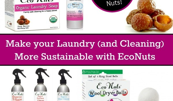 make your laundry more sustainable with EcoNuts