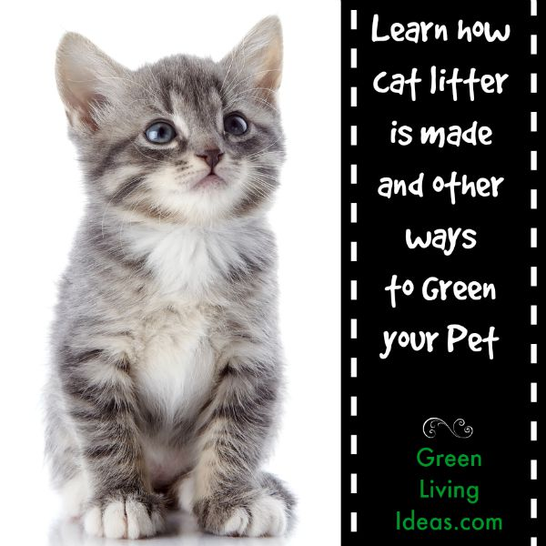 If you don't know how cat litter is made, it's important to get the facts here! The kitty litter we choose for our little furry friends can make a big difference in their overall carbon paw-print (sorry, couldn't help it!).