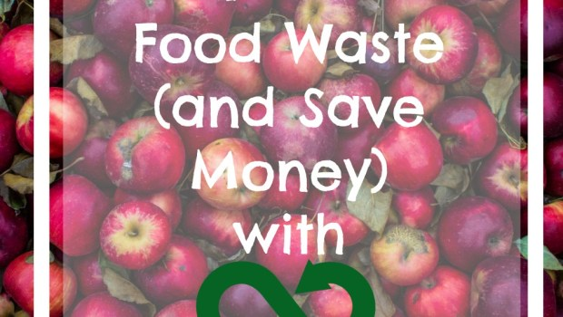 How To Reduce Food Waste (and Save Money)