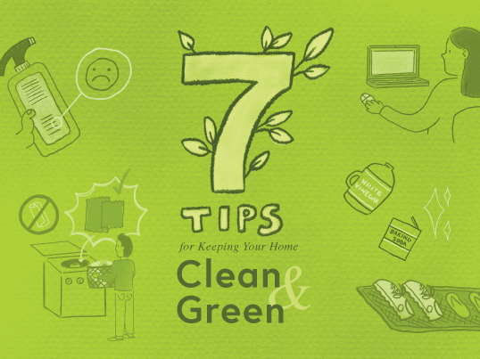earth friendly cleaning for home and work
