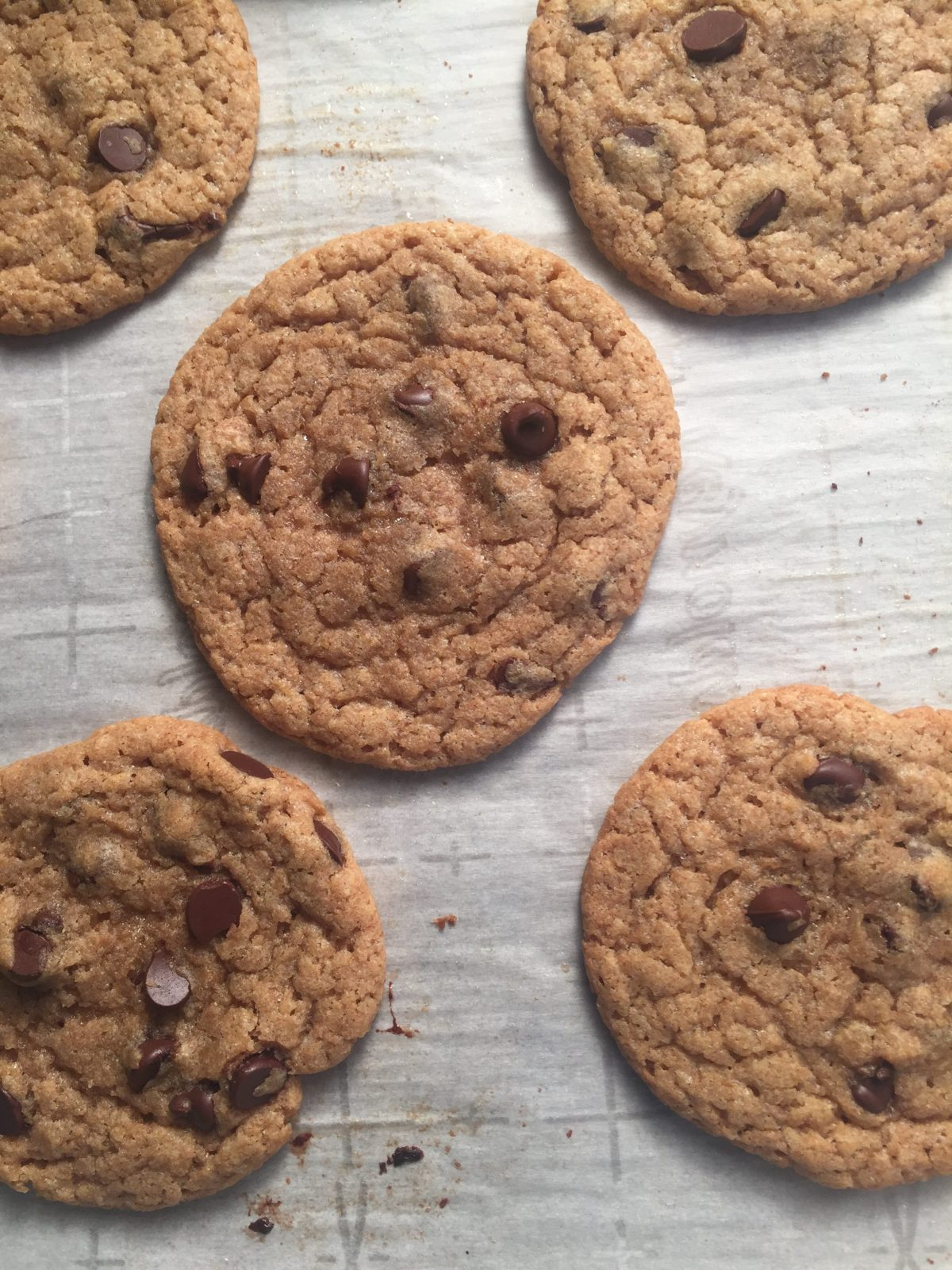 duck fat chocolate chip cookies recipe