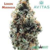 Lemon Meringue by Avitas