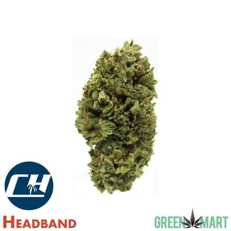 Headband by Cascade High