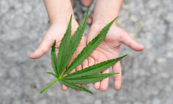 New Bill Would Allow Medical Marijuana in New Mexico Schools