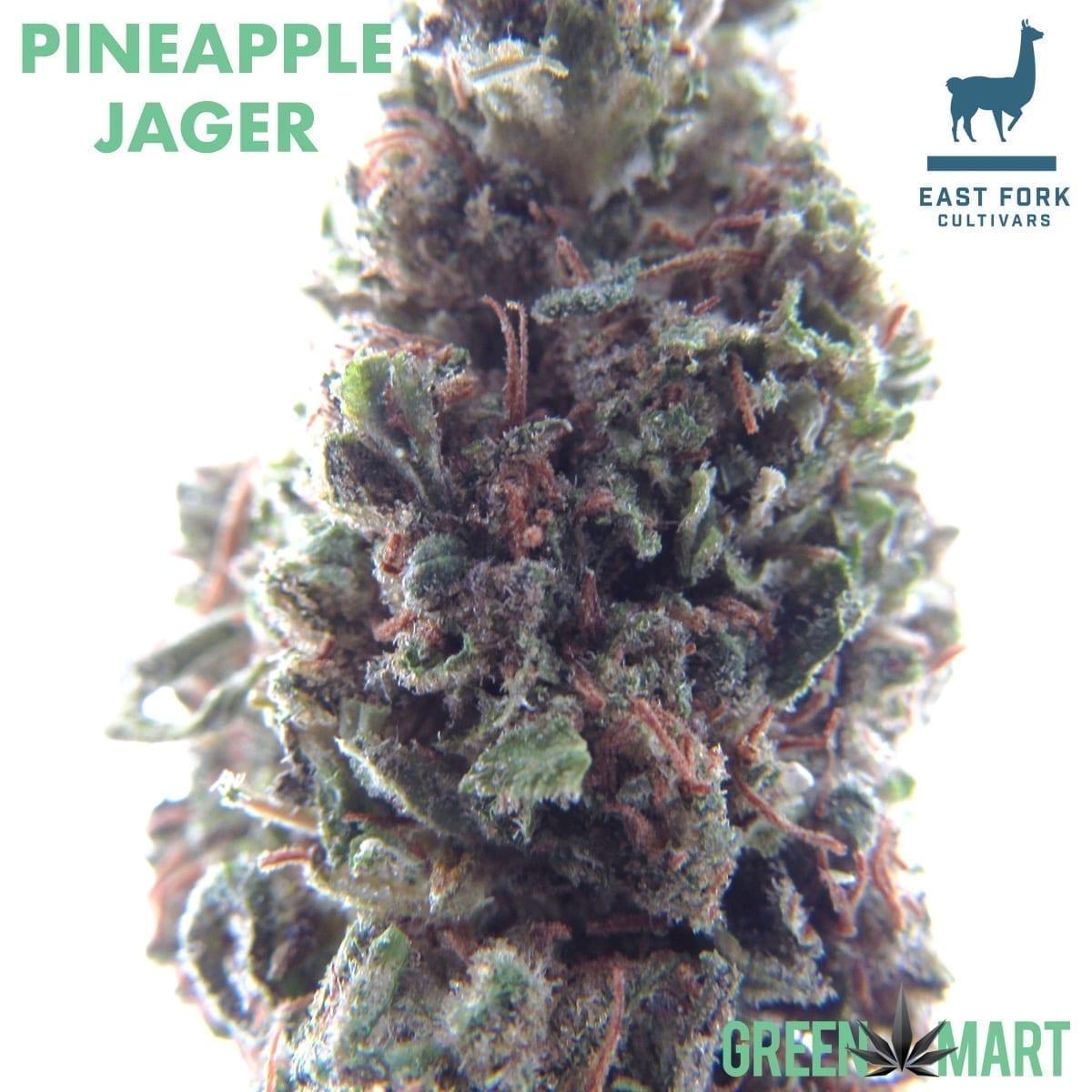 Pineapple Jäger – High CBD Heavy Pre-packs! – Green Mart