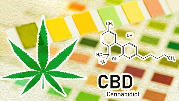 Does CBD Show Up On Drug Tests? Source: Wikileaf