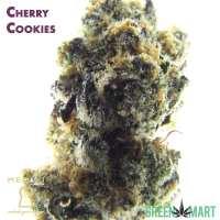 Cherry Cookies by Meraki Gardens