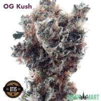 OG Kush by Otis Gardens