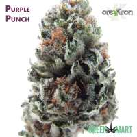 Purple Punch by Orekron