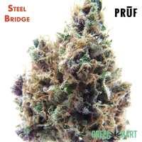 Steel Bridge by Pruf Cultivar