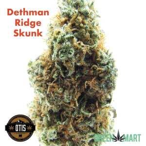Dethman Ridge Skunk by Otis Gardens