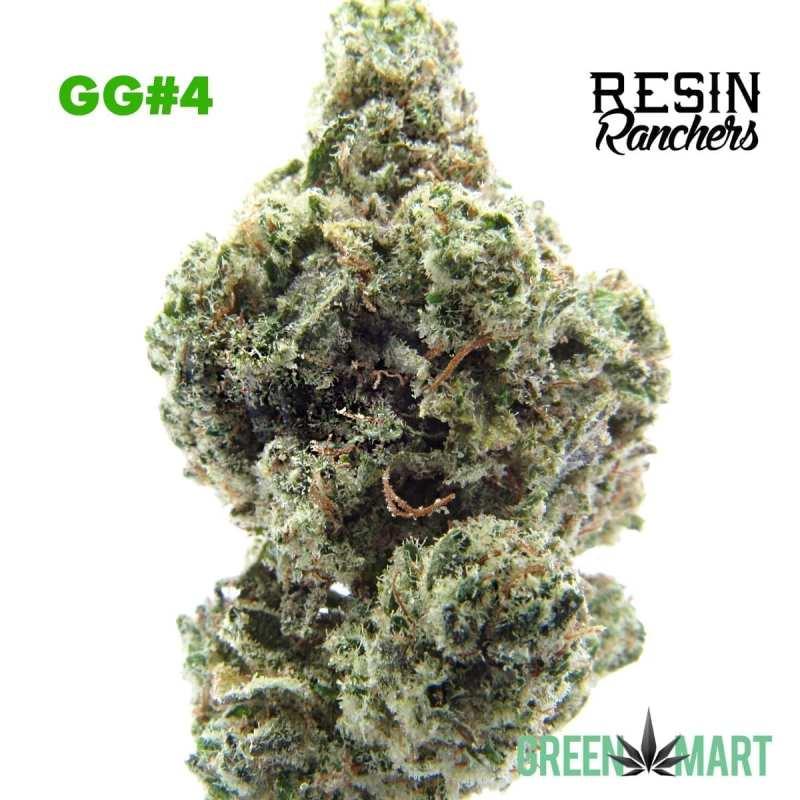 Resin Rangers GG4