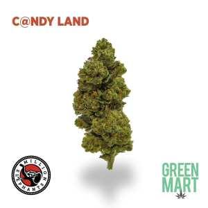 Candyland by Million Elephants