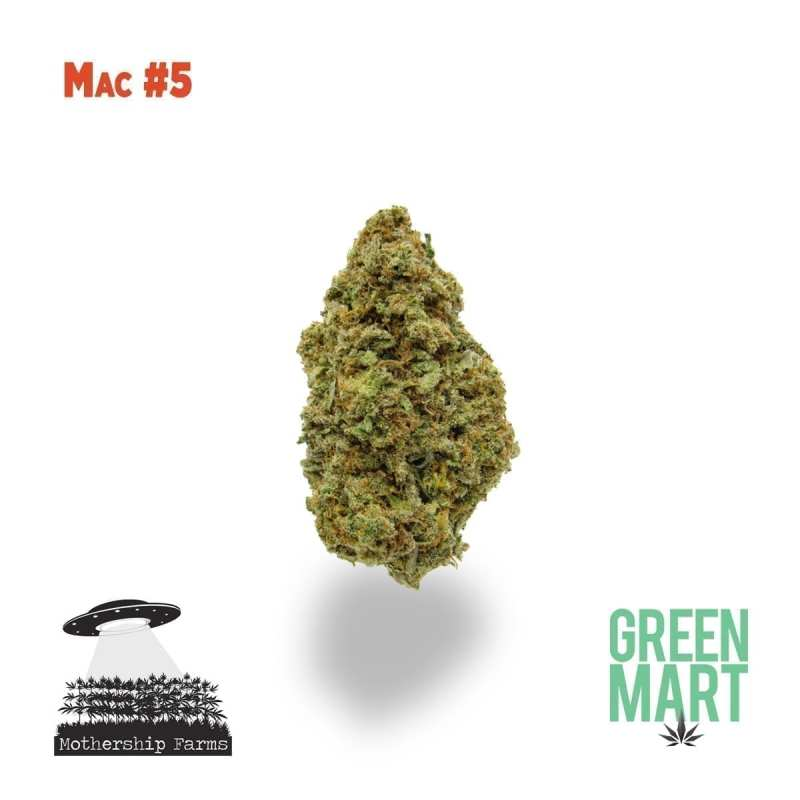 Mac #5 Mothership Farms