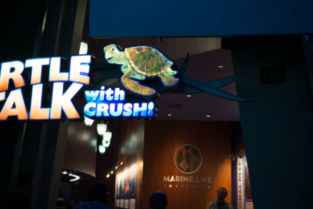 Turtle Talk with Crush Entrance at Animation Courtyard in Disneyland