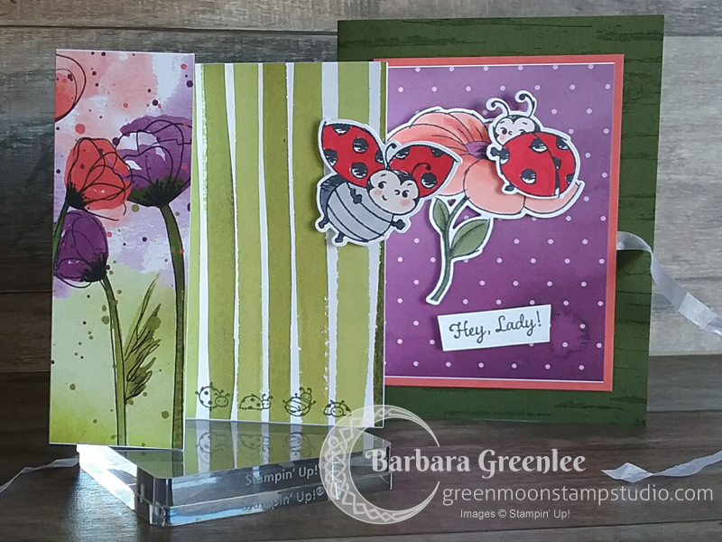 This Panel Pull-out technique is the perfect technique to show off all the ladybugs in the Sale-a-Bration hostess set, Little Ladybug.