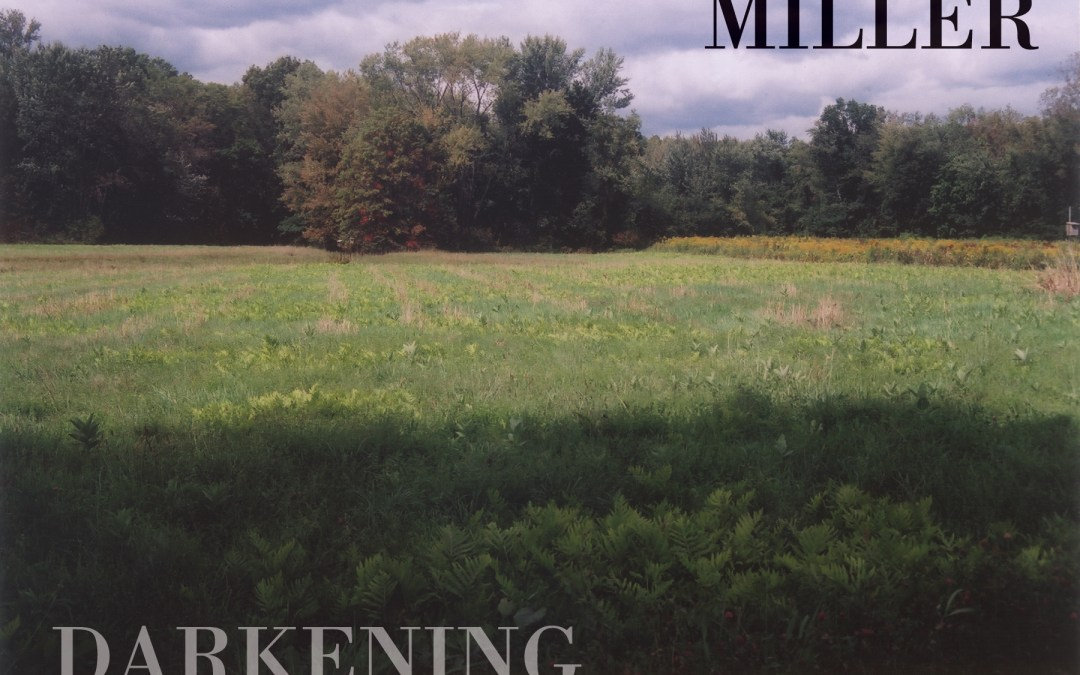A Review of Darkening the Grass by Michael Miller