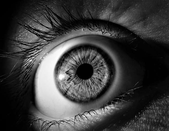 An Eye That Never Closes in Sleep